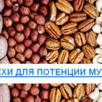 Орехи для потенции у мужчин