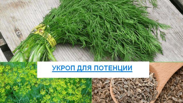 много травы