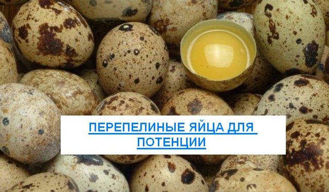 Узнай как повысить потенцию принимая перепелиные яйца