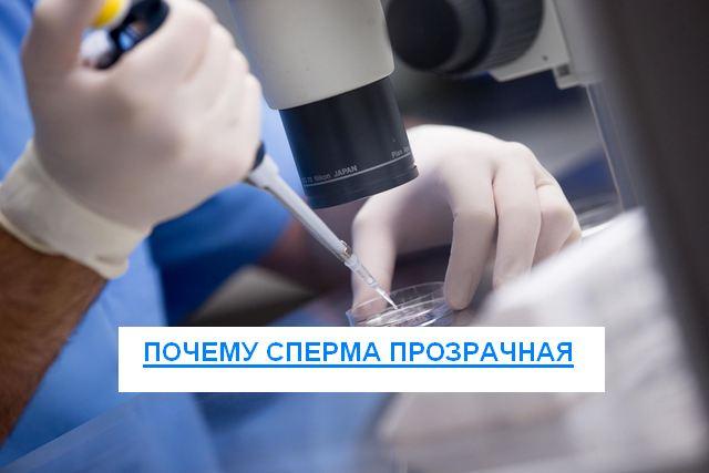 Почему сперма прозрачная