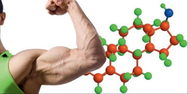 дигидротестостерон повышен у мужчин
