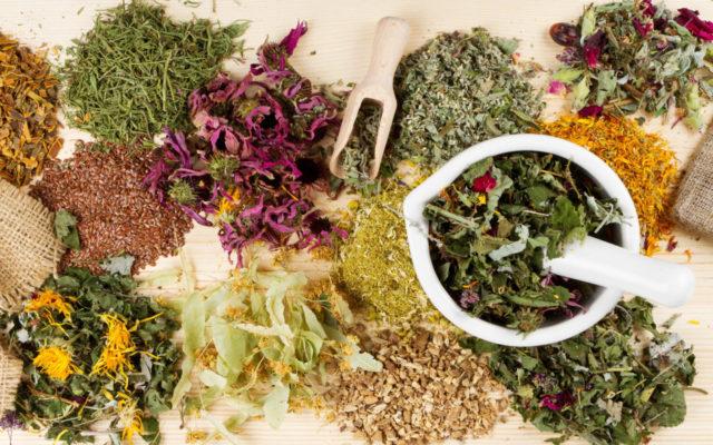 лечение травами простатита